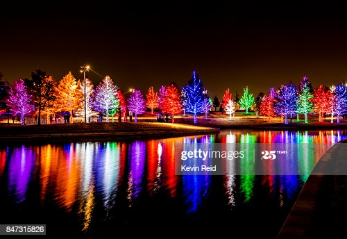 Beautiful trees filled with Holiday Christmas lights reflect off a pond